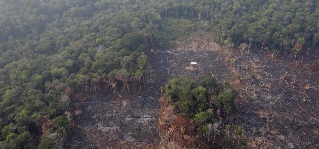 Bolsonaro dice que Brasil no tienen recursos para combatir incendios en la Amazonia